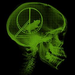 Hamster Head Scan
