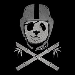 Panda Raider