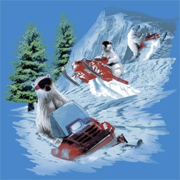 Polar Bears Snowmobiling