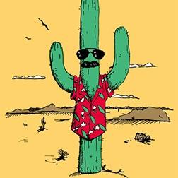 Undercover Cactus
