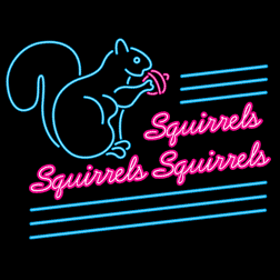 Squirrels Squirrels Squirrels